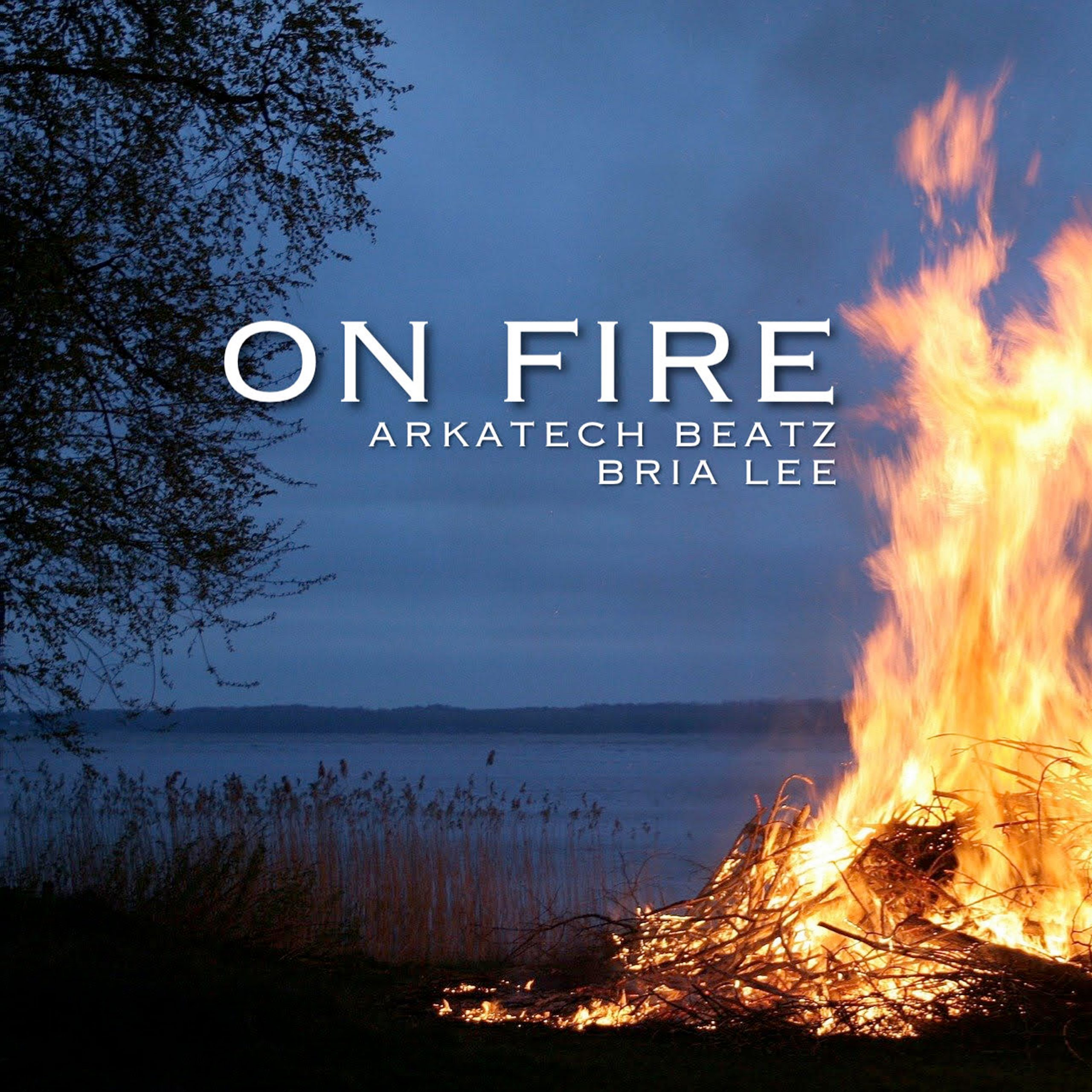 On Fire Cover